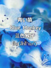 pictory_image_20190902_085158_90d112fbdea44d09a41191d18fa4a82d