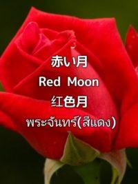 pictory_image_20190902_194225_36f1c25a80fb4f23b94be2f5868268f6