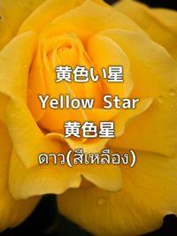 pictory_image_20190903_074351_87bd31869d3842d7a0462549789dd841